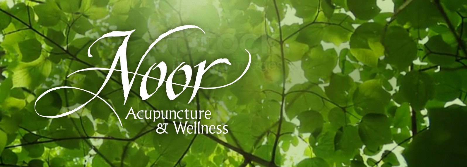 Noor Acupuncture and Wellness